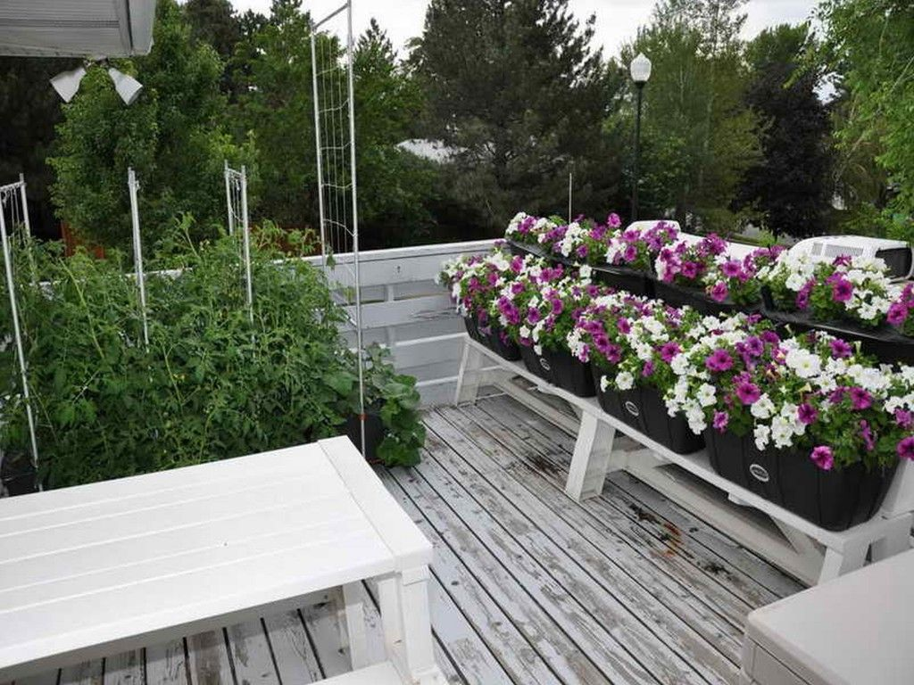 Cheap Garden Ideas Uk garden-ideas-garden-design-ravishing-budget-garden-design-ideas