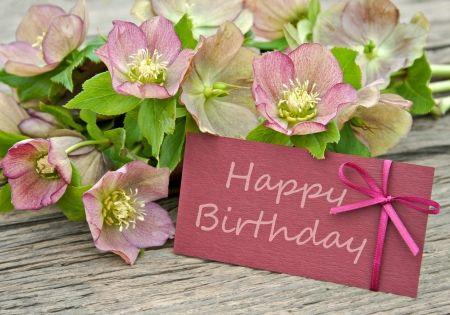 Birthday wishes for u wb01602 harte van goud pinterest find birthday wishes for u wb01602 harte van goud pinterest find birthdays birthdays and flowers m4hsunfo