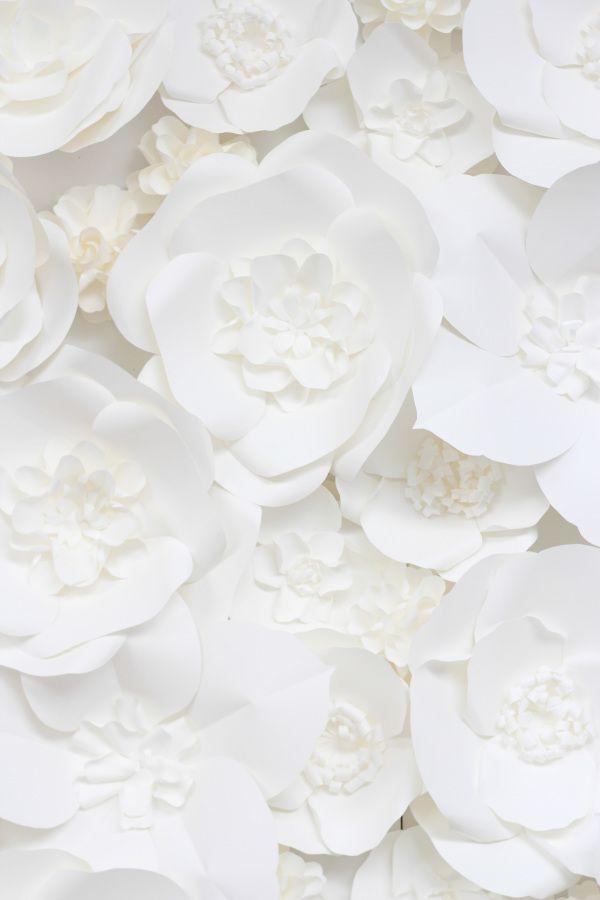 Style Me Pretty The Vault Blanc Couleur Blanc Fond D Ecran Couleur
