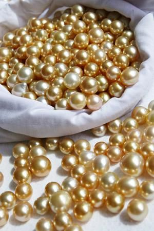 7db395974 Pirate treasure - Jewelmer south sea pearls. Upon its lustrous surface,  every change in tide and temperature and every impurity is recorded, ...