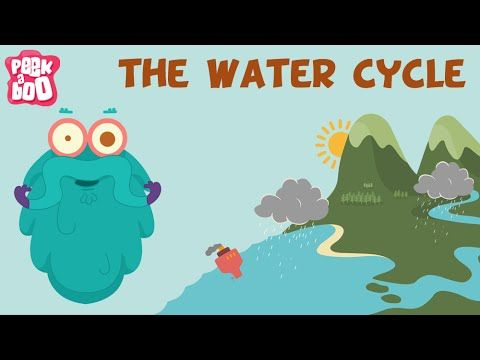 The Water Cycle The Dr Binocs Show Learn Series For Kids