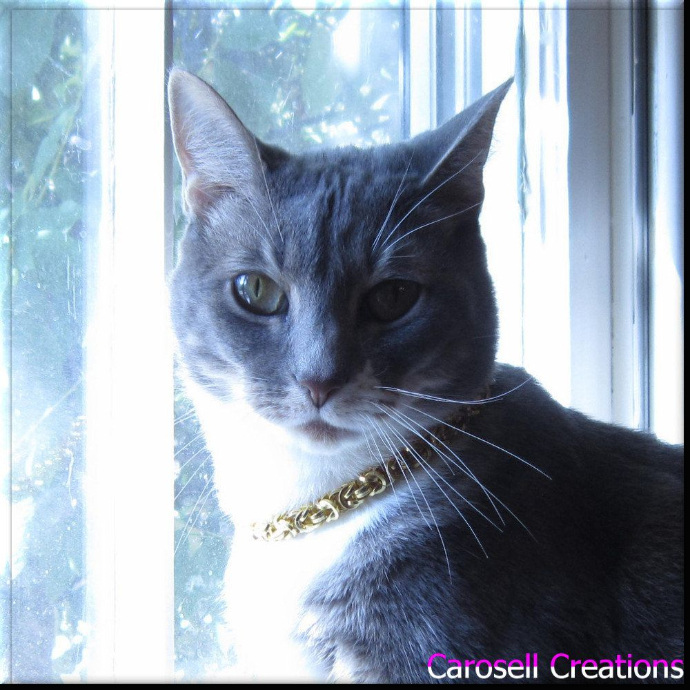 Chainmaille Pet Collar Gold Byzantine Chain Mail Cat Collar Or Dog Collar Pet Jewelry With Breakaway Collar Cat Collars Pet Collars Gold Dog Collar