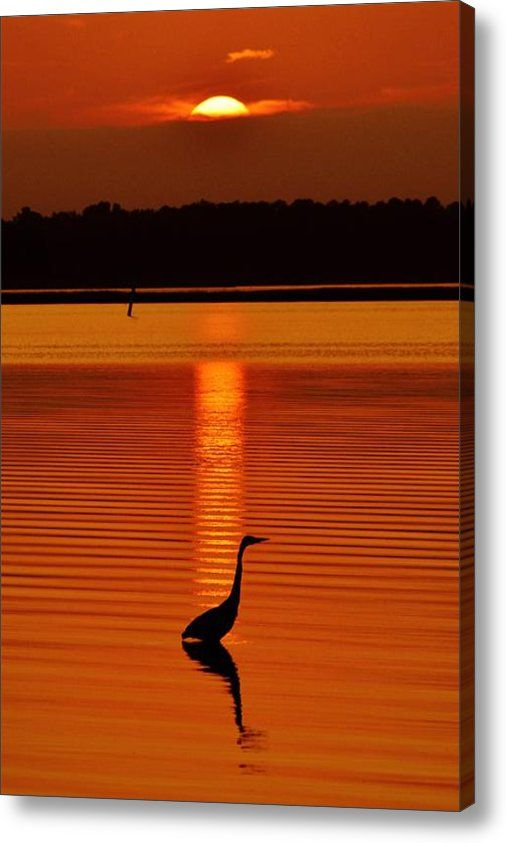 Limited Time Promotion: Bayside Ripples Stretched Canvas Print