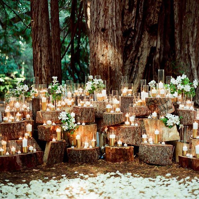 Forest Wedding Altar: Enchanting & Romantic Woodlands Wedding Theme With Gold