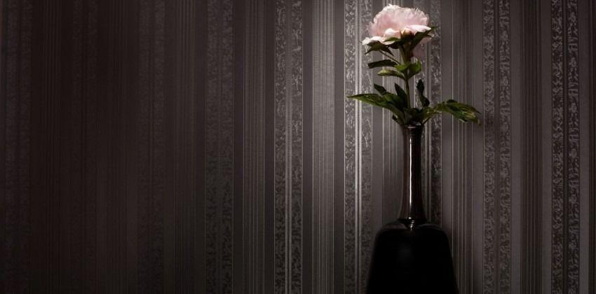 vapaa pics sarja Ilmainen iso musta kukko kuvia