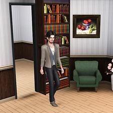 "Mod The Sims Sliding bookcase "" Hidden door "" Up to 27"