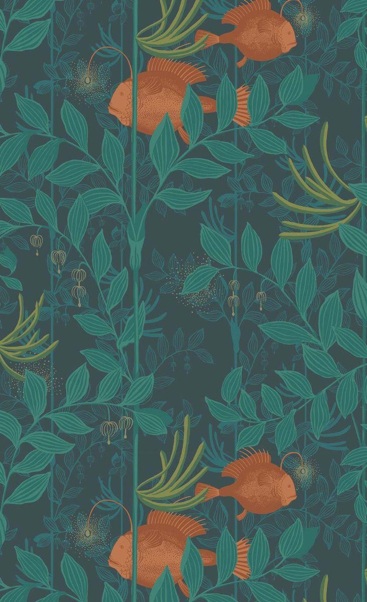 Papier Peint Nautilus Cole And Son Dark Green Wallpaper Cole Son Wallpaper Cole Son