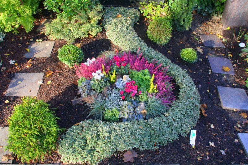 Ganz und zu Extrem Was soll ich als Grabbepflanzung benutzen? #schönegräber #OF_65