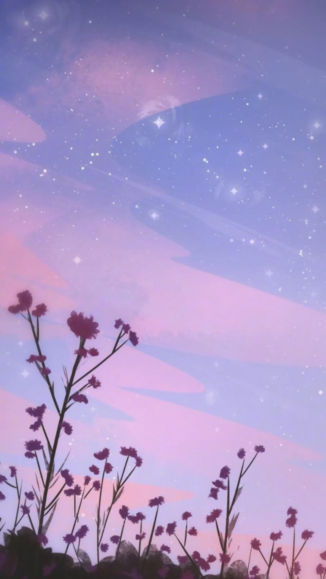 Summer Night Sky Wallpaper Anime Scenery Wallpaper Cute Wallpaper Backgrounds Nature Wallpaper