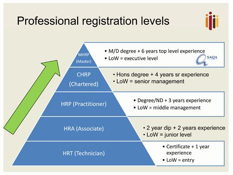 Hr Career Path Level Job Hunting Management Degree Senior