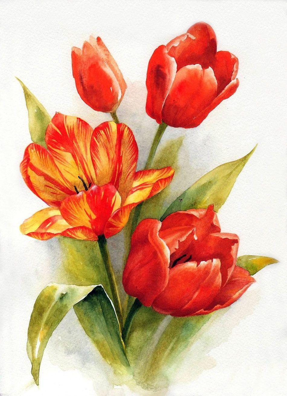 Открытка нарисованные тюльпаны, ночь