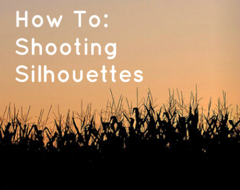Tips for shooting silhouette pictures