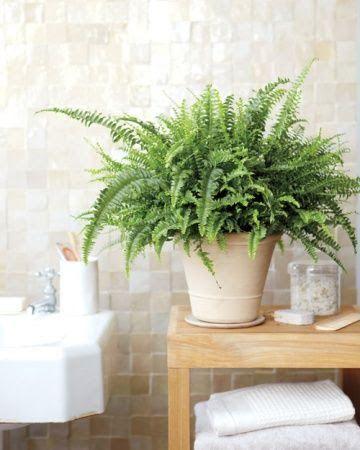6 conseils pour bien repeindre du carrelage - repeindre du carrelage de salle de bain