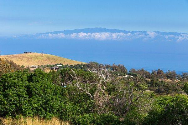 Craigslist Hilo Hawaii