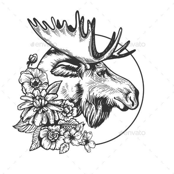 Moose Head Animal Engraving Vector Head Moose Animal Vector