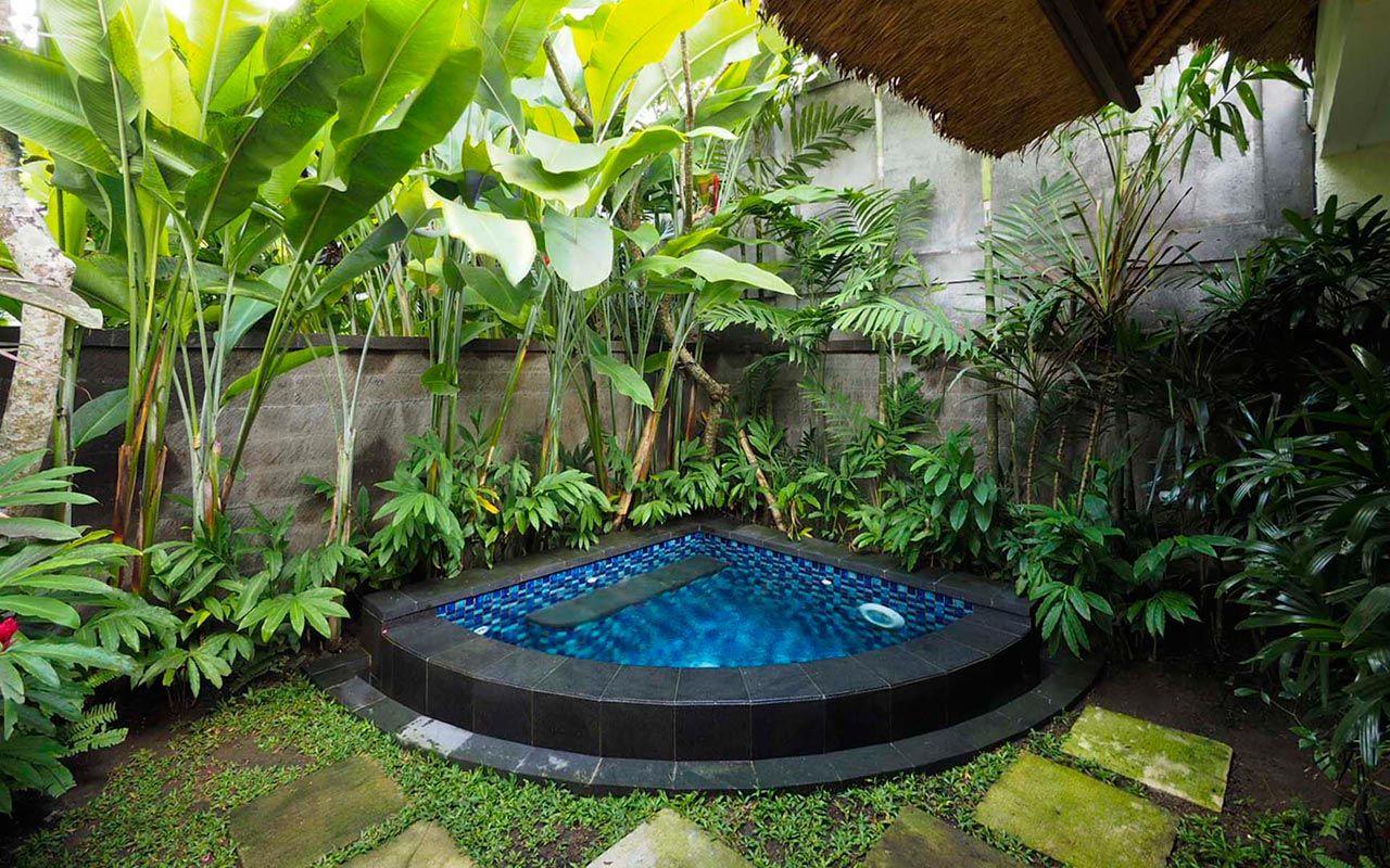 Plunge pool suite ubud hot tub pinterest plunge for Garden plunge pool