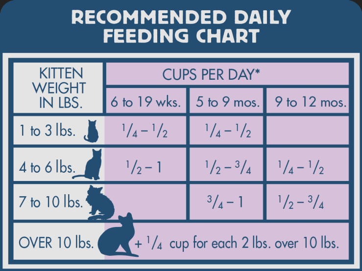 Image Result For Kitten Feeding Chart Cat Food Food Portions Dry Cat Food