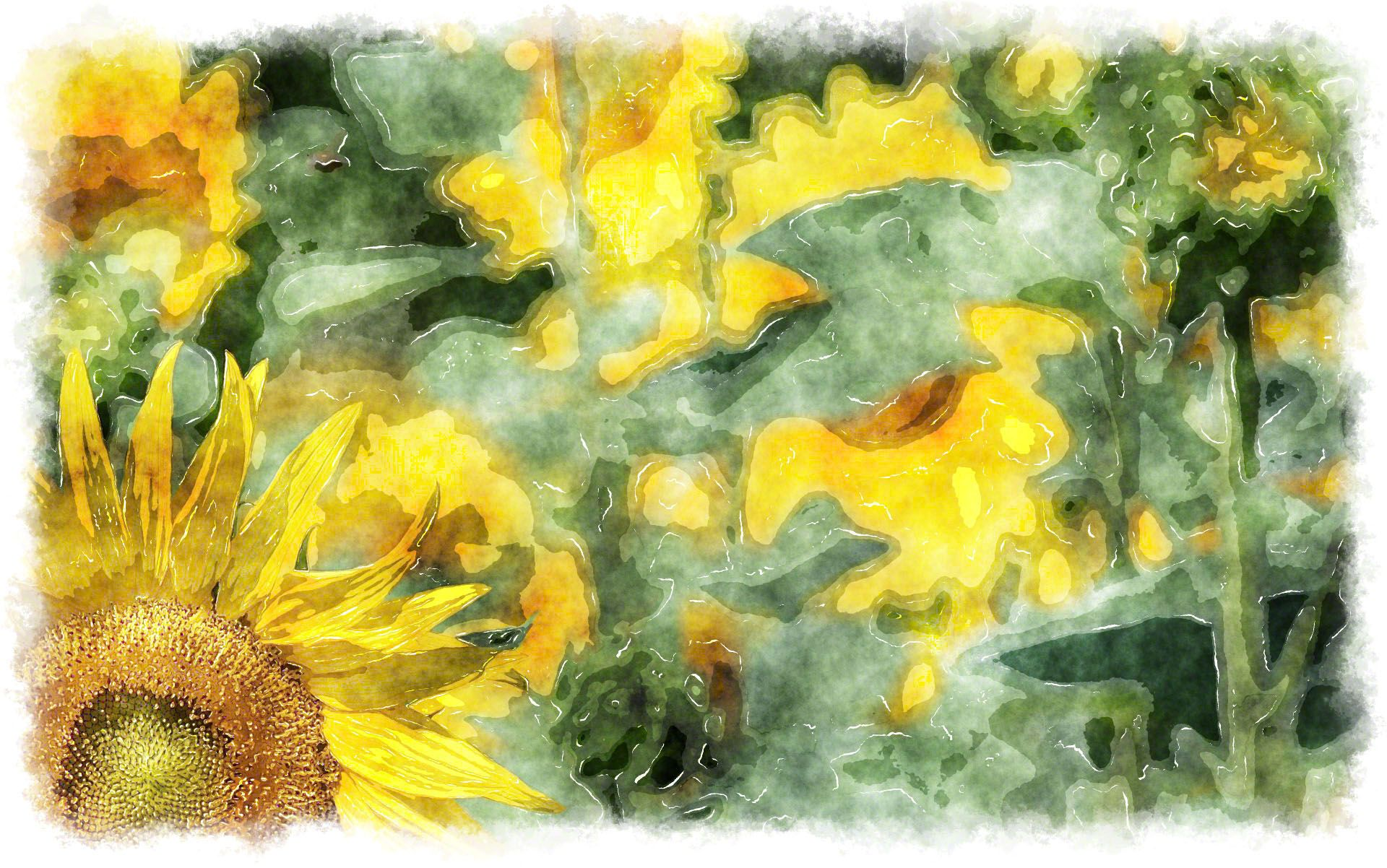 Sunflower Watercolor Painting A Beautiful Wallpaper Made With Art Applied To Photography High Resolution For Your Personal
