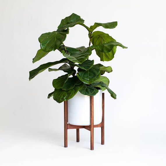 Mid Century Modern Planter Plant Stand With 10 Ceramic