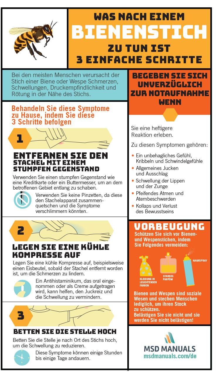 3Schritte, die nach einem Bienenstich sofort unternommen werden sollten – MSD Manual Ausgabe für Patienten – Kinder + Kleinkind + Krippenkind + Kindergartenkind