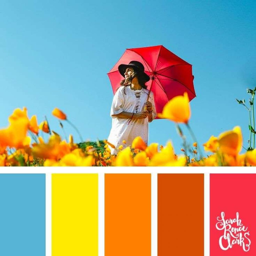 Luxury Orange Color Schemes Of 113 Best Summer Color Palettes