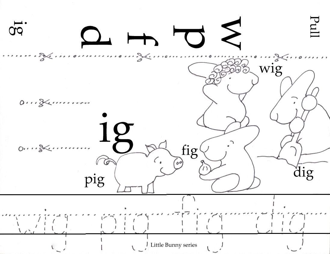 Phonograms Little Bunny Series In
