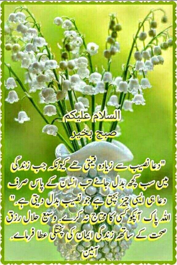Pin by aquib Akhtar on aquib   Morning quotes, Morning