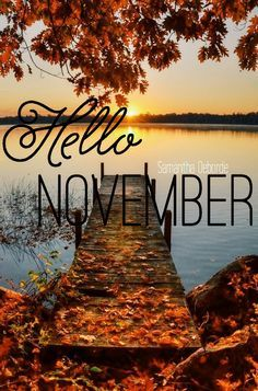 Hello November Images And Pictures on Pinterest - Free Printable Calendar, Blank Template, High Resolution Images, Pictures, Photos, Memes, Clipart, Pics, Background, Banners, Cards, Greetings, Coloring Pages,