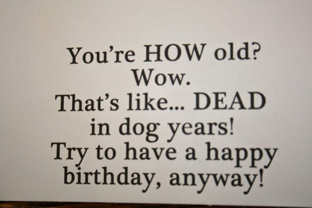 Funny Happy Birthday Meme Sister Images   Desktop HD ...