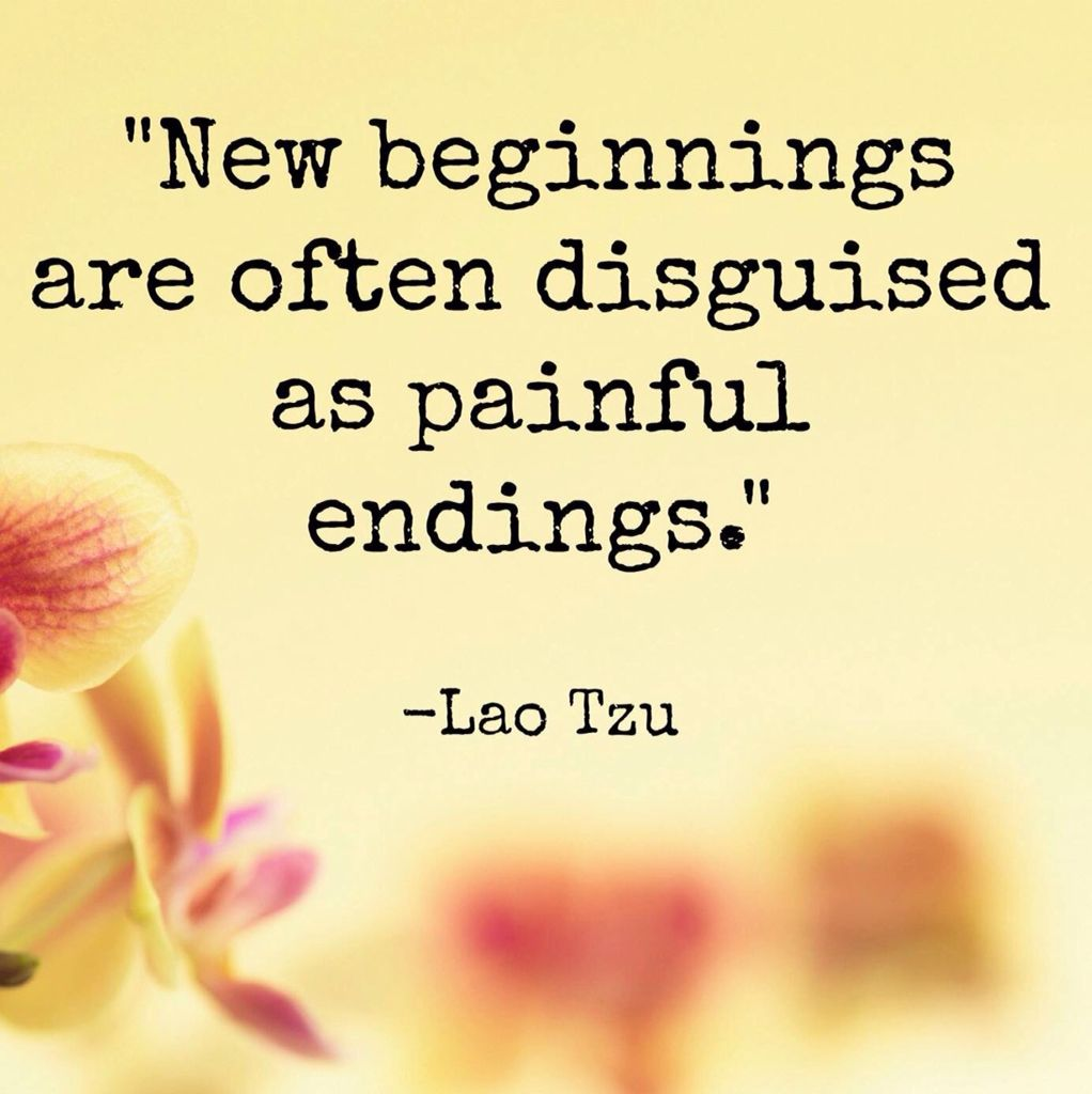 New Beginnings Amused Quotes Words Inspirational Quotes