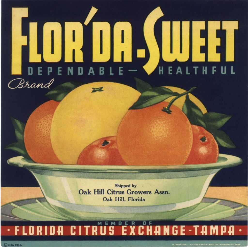 Winter Haven Florida Belle Winter Haven #2 Orange Citrus Fruit Crate Label Print