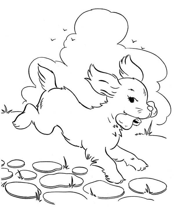 Dog Eats Delicous Bone Coloring Page Dog Coloring Page Coloring Pages Bat Coloring Pages