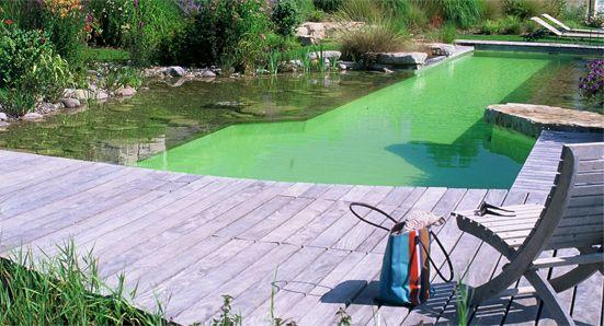 Schwimmteich selber bauen 13 märchenhafte Gestaltungsideen Garden - schwimmbad selber bauen