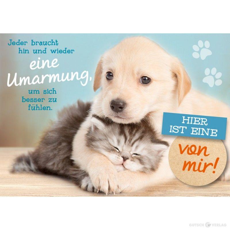 Postkarte Kultura Umarmung Bilder Hundespruche Niedliche Katzchen