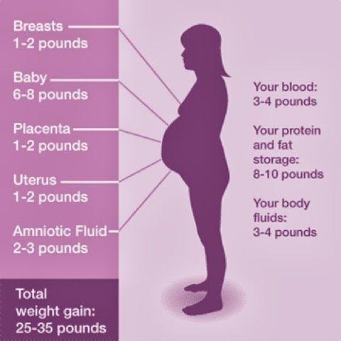 Weight Gain Pregnant Women