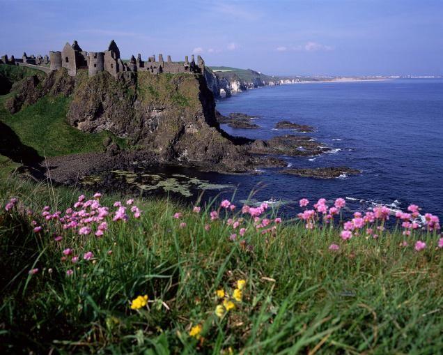 Confronting Elephants Castles In Ireland Ireland Tourism Antrim Ireland