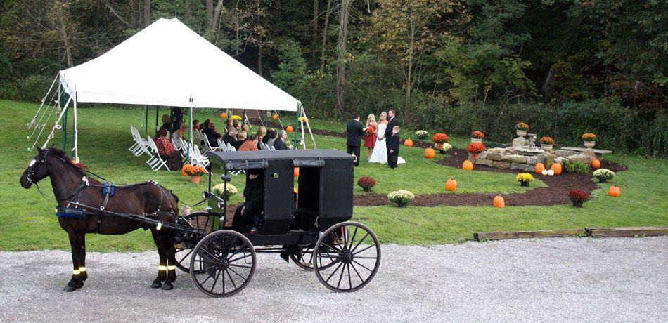 amish weddding, ohio barn wedding, amish marriage ...
