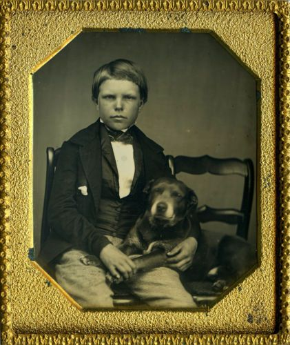 Wonderful Dog Daguerreotype of Serious Lad Holding the Paw of Boy's Best Friend! in Collectibles, Photographic Images, Vintage & Antique (Pre-1940), Daguerreotypes | eBay