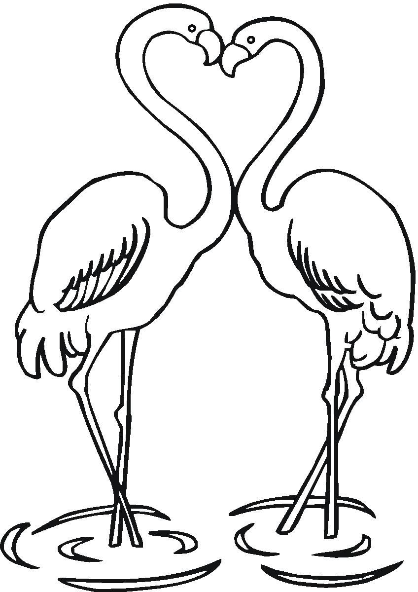 7 Flamingo Colouring Pages Flamingo Coloring Page Flamingo Color Colouring Pages
