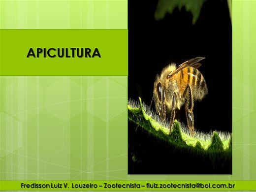 Curso Online de APICULTURA