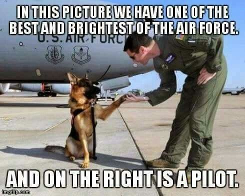 Search And Rescue Dog Ronnie High Fiving U Greg Auerbach An Stratotanker Aircraft Instructor Pilot With The Air Refueling Squadron
