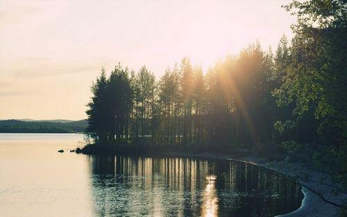 Картинки по запросу красивые фото природы в хорошем ...