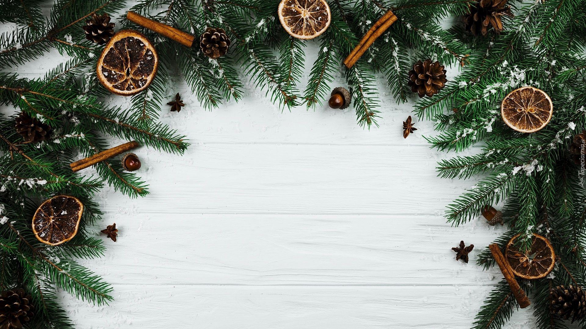 Boże Narodzenie Gałązki Szyszki Plastry Pomarańczy