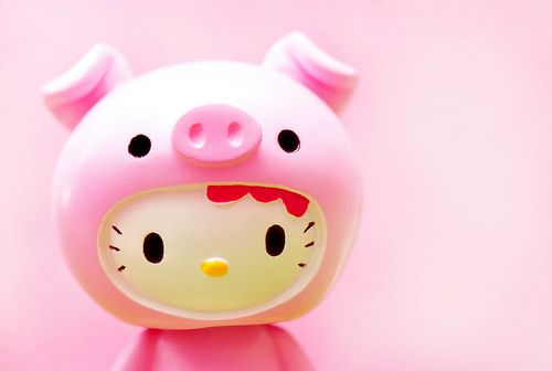 Hello Kitty Pig dressed