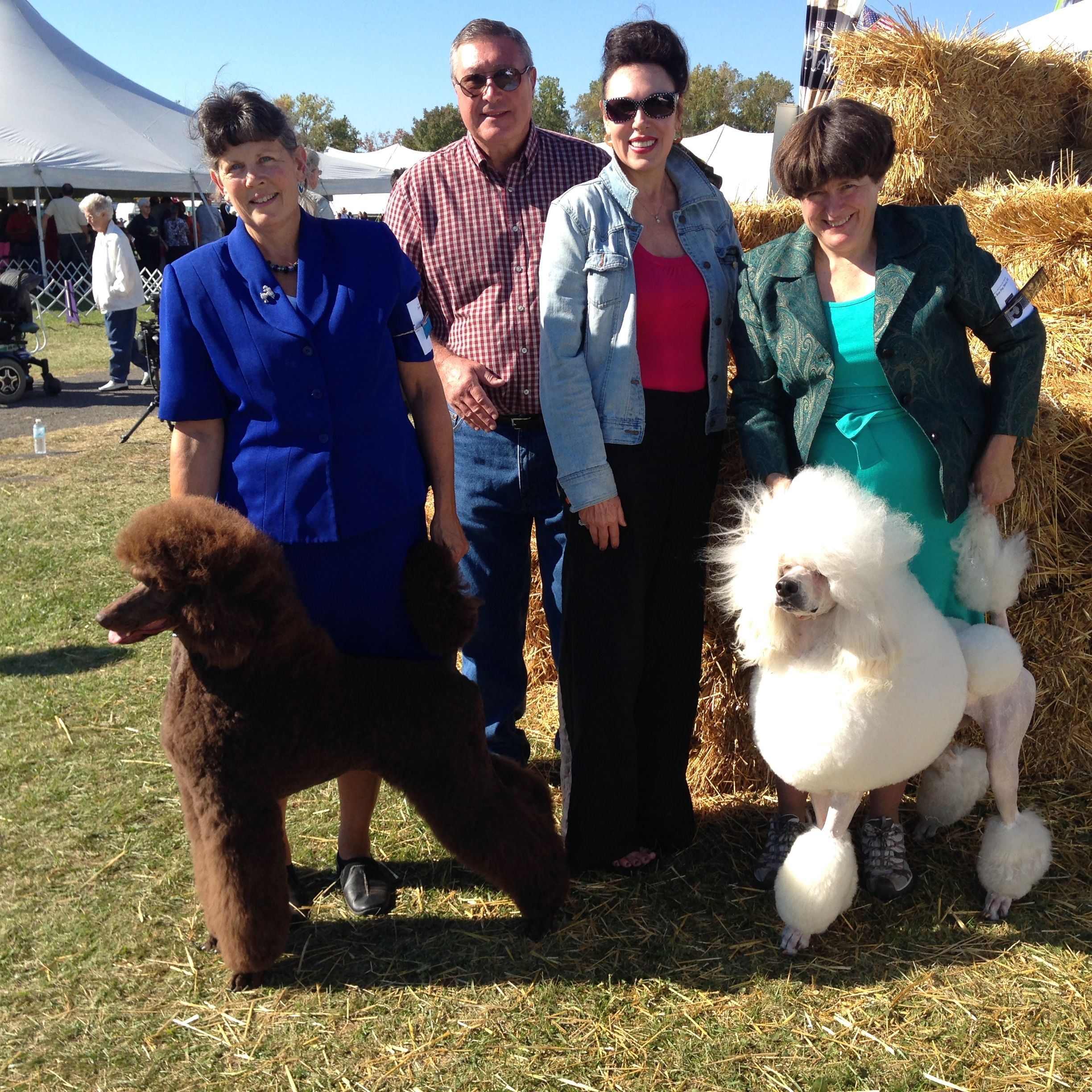 At The Dog Show In Romulus New York On Saturday September 28th