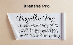 Breathe Pro
