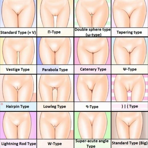 Different types vaginas