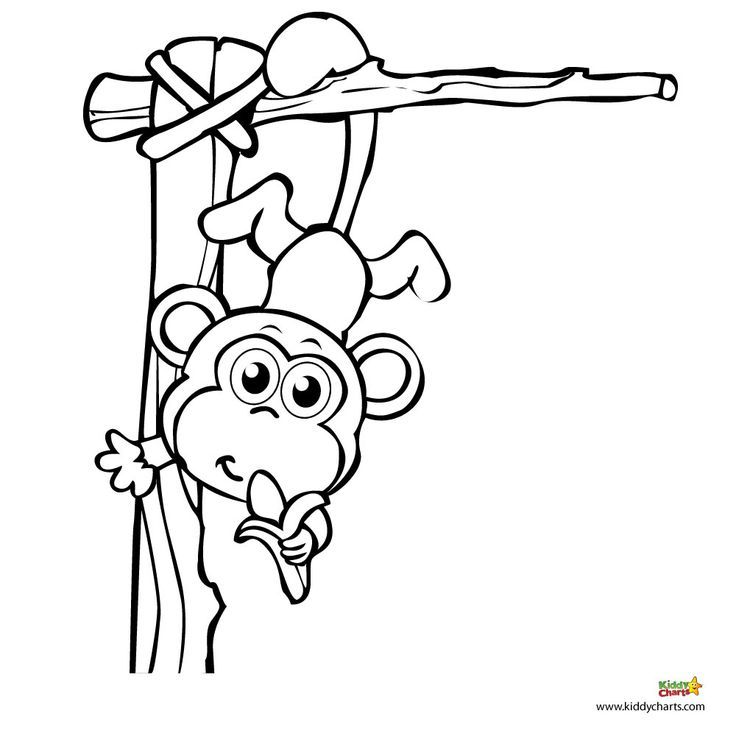 Monkey coloring printable pages swinging