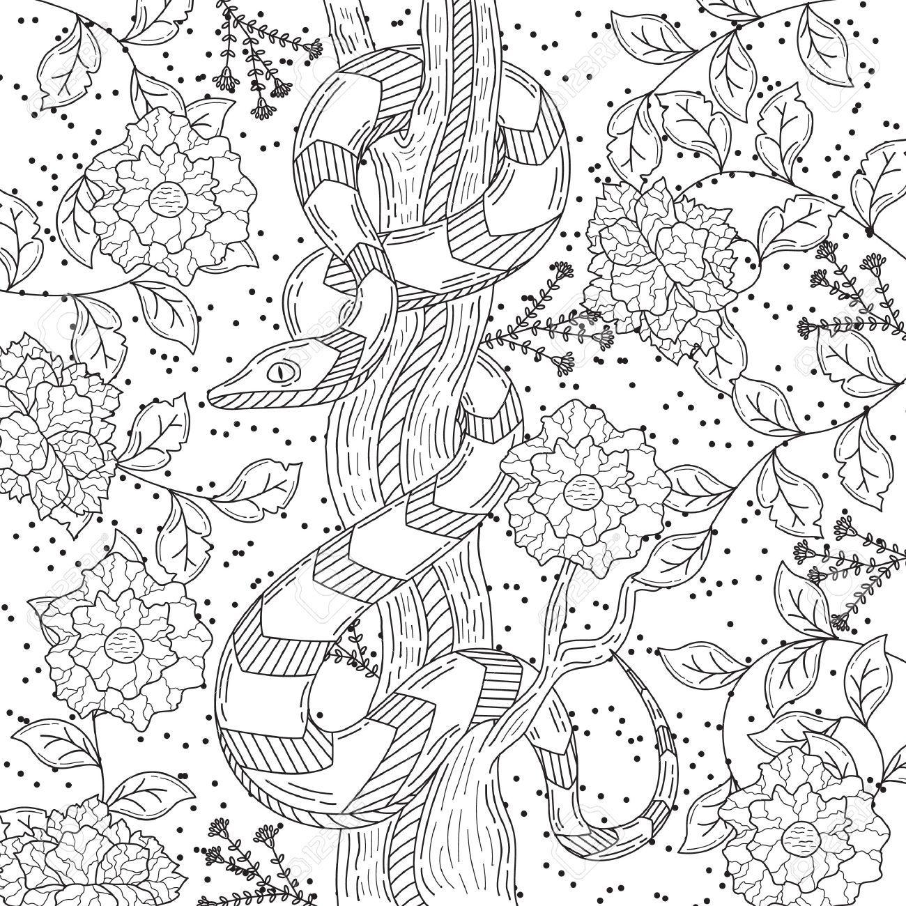 Intrincado Serpiente Diseño Ilustraciones Vectoriales, Clip Art ...