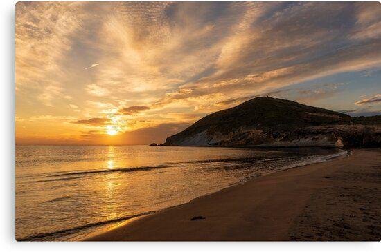Lienzo de la playa de los Genoveses del cabo de gata, Almería